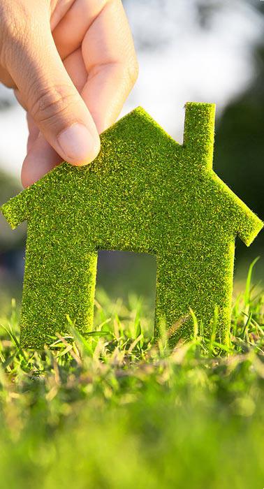 этапы экологического ремонта